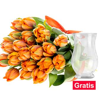 20 orange Tulpen im Bund mit Vase