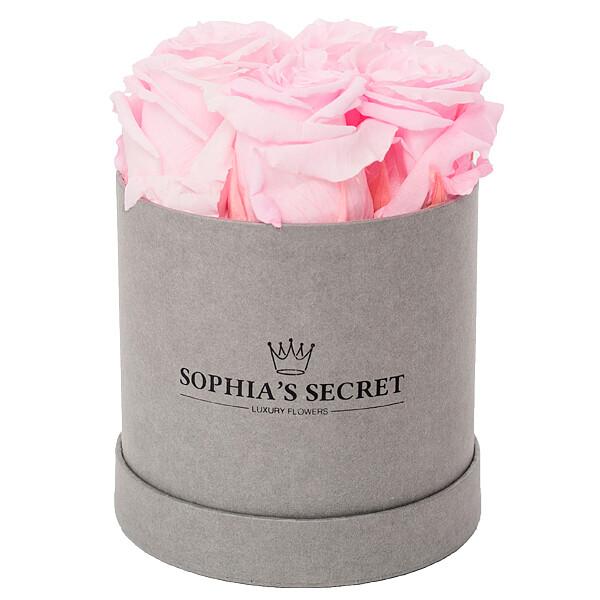 5 rosa Rosen in grauer Rundbox