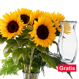 7 Sonnenblumen im Bund mit Vase