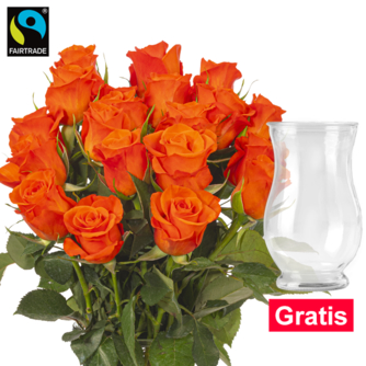 20 orange Fairtrade Rosen im Bund mit Vase