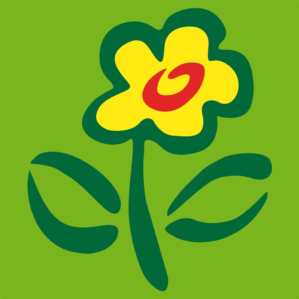 20 gelbe Tulpen im Bund mit Vase